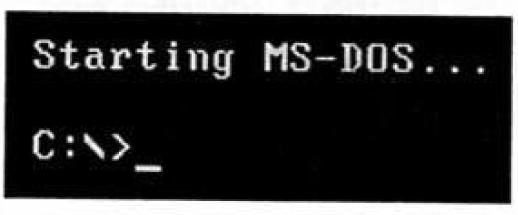 слика 3. MS-DOS
